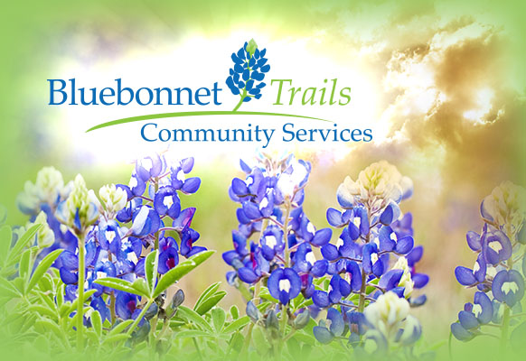 Default Square Bluebonnets
