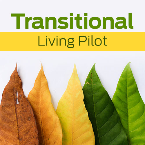 Transitional Living Pilot